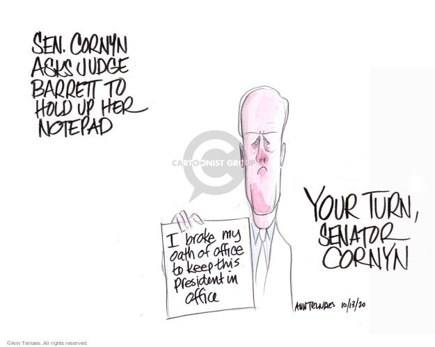 Ann Telnaes  Ann Telnaes' Editorial Cartoons 2020-10-13 senator