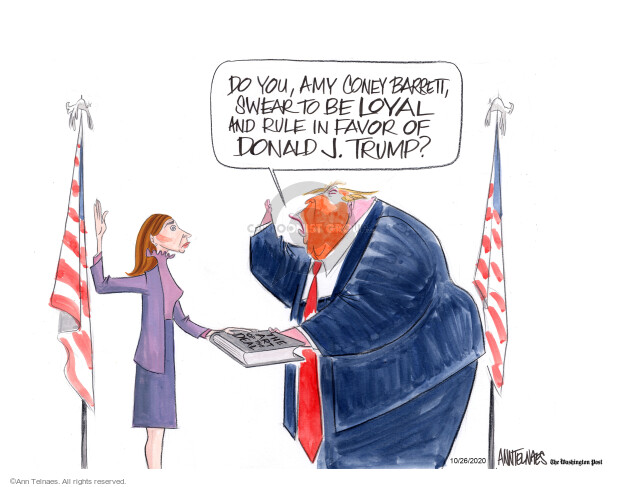 Ann Telnaes  Ann Telnaes' Editorial Cartoons 2020-10-26 Supreme Court appointment