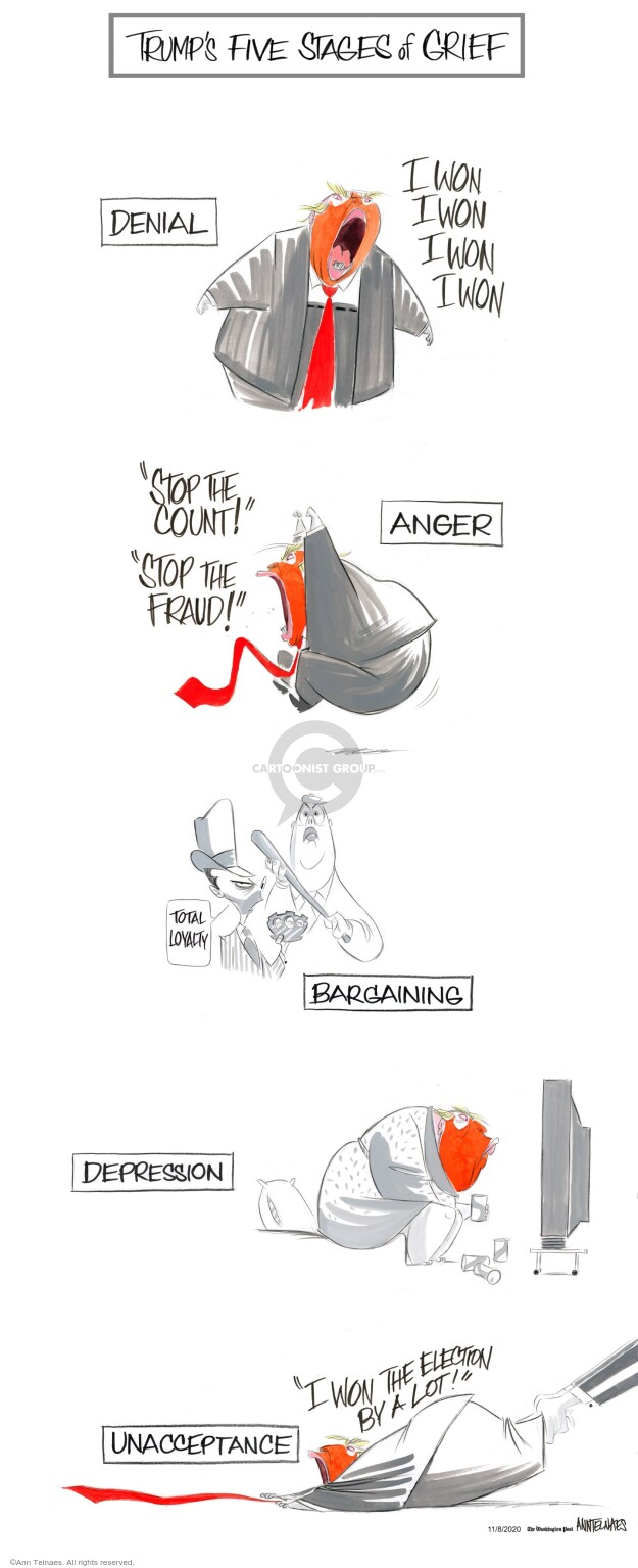 Ann Telnaes  Ann Telnaes' Editorial Cartoons 2020-11-08 republican president