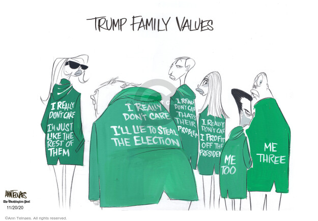 Ann Telnaes  Ann Telnaes' Editorial Cartoons 2020-11-20 presidential election