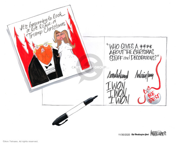 Ann Telnaes  Ann Telnaes' Editorial Cartoons 2020-11-30 presidential election