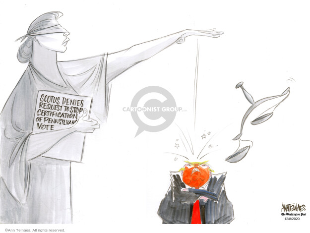 Ann Telnaes  Ann Telnaes' Editorial Cartoons 2020-12-08 presidential election