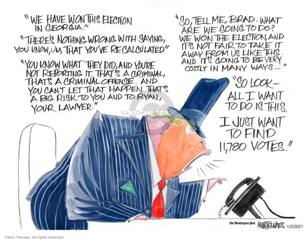 Ann Telnaes  Ann Telnaes' Editorial Cartoons 2021-01-03 presidential election