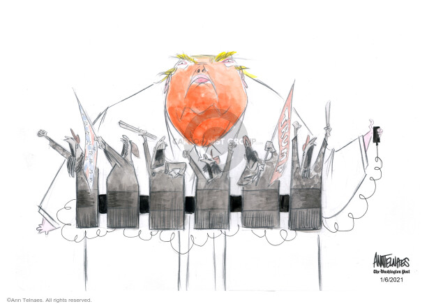 Ann Telnaes  Ann Telnaes' Editorial Cartoons 2021-01-06 presidential election