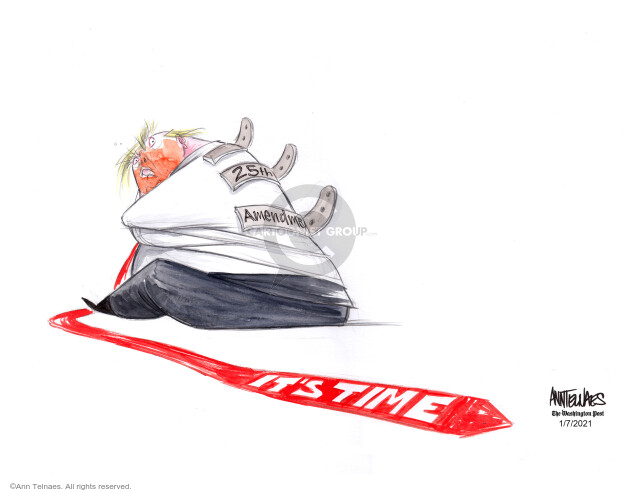 Ann Telnaes  Ann Telnaes' Editorial Cartoons 2021-01-07 presidential election