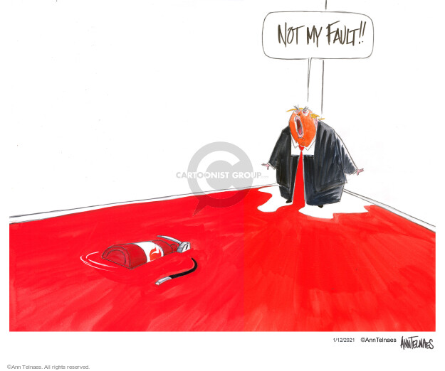 Ann Telnaes  Ann Telnaes' Editorial Cartoons 2021-01-12 Congress