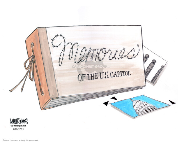 Ann Telnaes  Ann Telnaes' Editorial Cartoons 2021-01-29 representative
