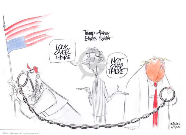 Ann Telnaes  Ann Telnaes' Editorial Cartoons 2021-02-09 Donald Trump Lawyers