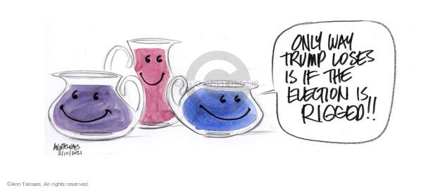 Ann Telnaes  Ann Telnaes' Editorial Cartoons 2021-02-10 election