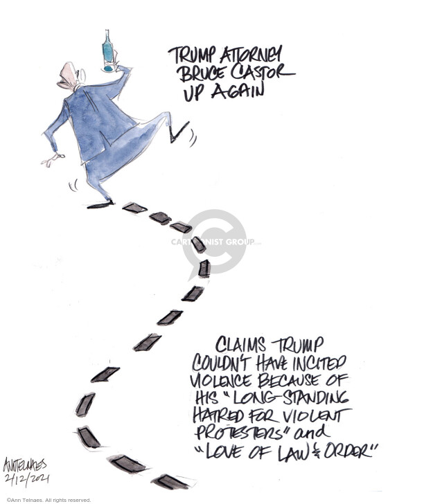Ann Telnaes  Ann Telnaes' Editorial Cartoons 2021-02-12 his