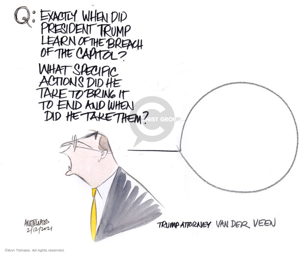 Ann Telnaes  Ann Telnaes' Editorial Cartoons 2021-02-12 building