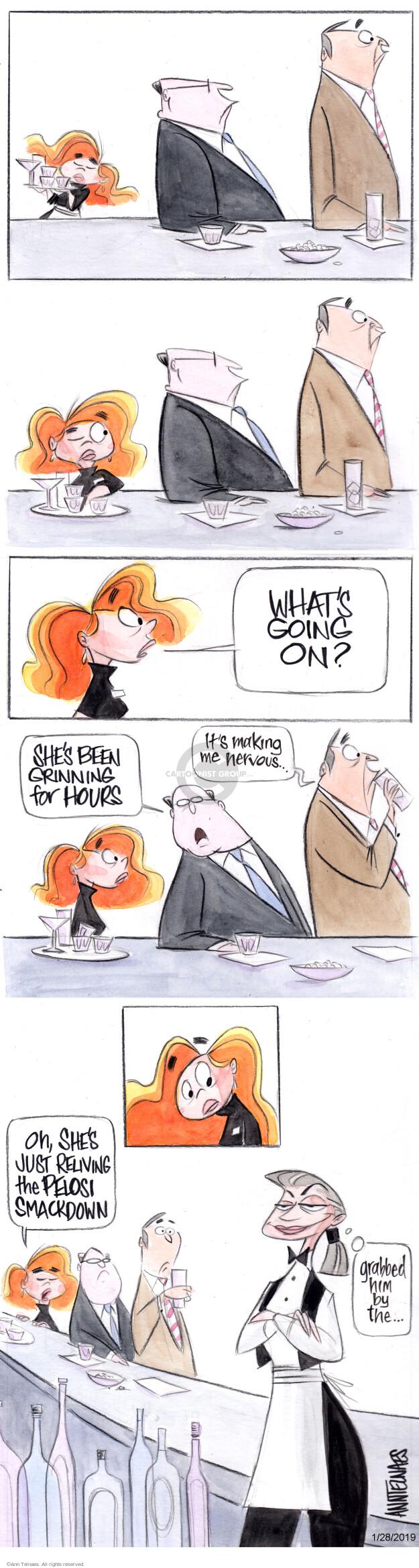 Ann Telnaes  Ann Telnaes' Editorial Cartoons 2019-01-28 state