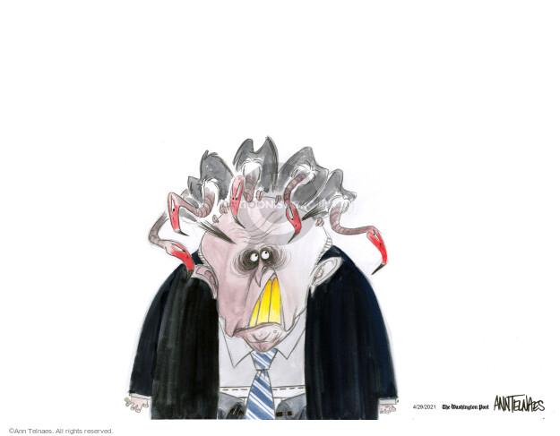 Ann Telnaes  Ann Telnaes' Editorial Cartoons 2021-04-29 federal