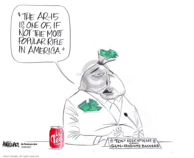 Ann Telnaes  Ann Telnaes' Editorial Cartoons 2021-05-26 gun rights