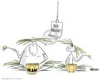Cartoonist Ann Telnaes  Ann Telnaes' Editorial Cartoons 2007-12-03 veep