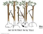 Cartoonist Ann Telnaes  Ann Telnaes' Editorial Cartoons 2005-07-19 Karl