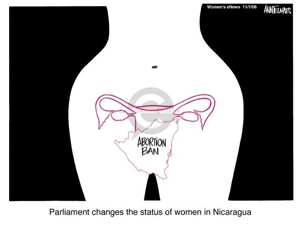 Cartoonist Ann Telnaes  Ann Telnaes' Women's  eNews Cartoons 2006-11-01 reproductive rights
