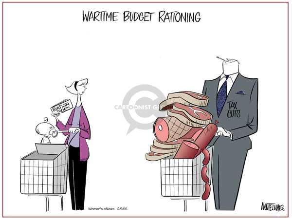 Ann Telnaes  Ann Telnaes' Women's  eNews Cartoons 2005-02-09 federal budget