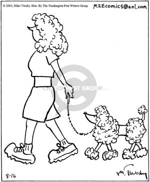 (No caption).  A poodle-resembling woman walks a poodle.