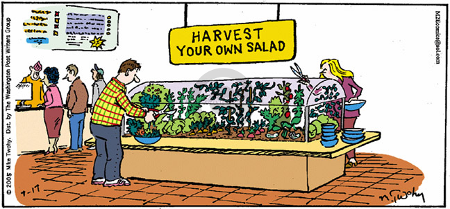 Harvest your own salad.