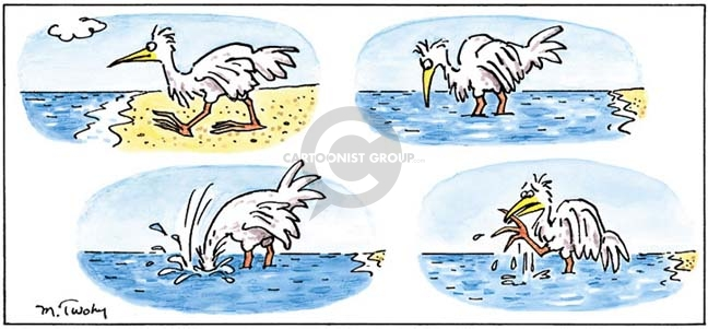 (No caption.)  Bird walks into water at shore.  It feels something on the ground.  Reaches its head into the water and comes up with its own foot in its beak.)