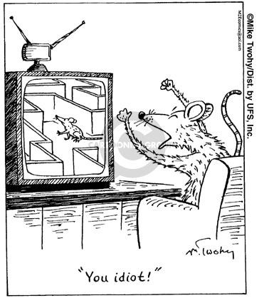 You idiot!  (Mouse yells at mouse on television.  TV mouse is going through a maze.)