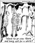 Cartoonist Mike Twohy  That's Life 2003-06-16 forest