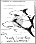 Comic Strip Mike Twohy  That's Life 2005-02-12 shark