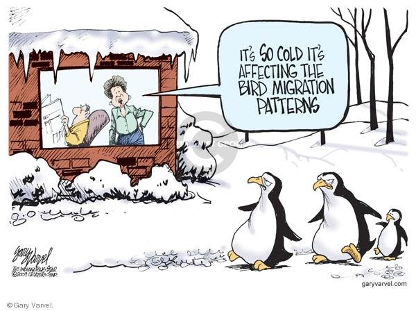 Cartoonist Gary Varvel  Gary Varvel's Editorial Cartoons 2009-01-16 temperature