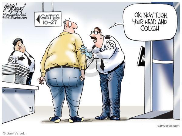 Gary Varvel  Gary Varvel's Editorial Cartoons 2010-11-19 safety