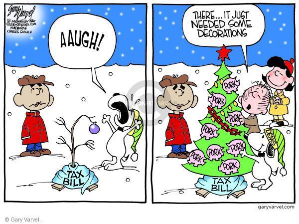 Cartoonist Gary Varvel  Gary Varvel's Editorial Cartoons 2010-12-15 democratic