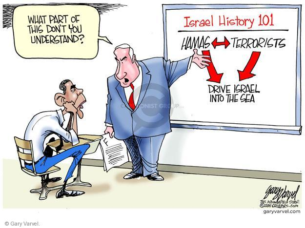 Cartoonist Gary Varvel  Gary Varvel's Editorial Cartoons 2011-05-21 Obama terrorism
