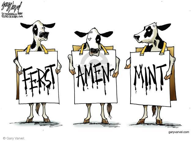 "No caption (The Chick-Fil-A cows spell out ""Ferst"" ""Amen"" ""Mint"" on their signs)."