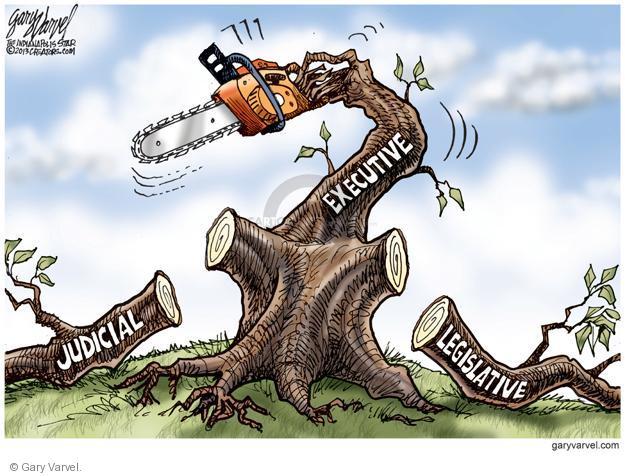 Cartoonist Gary Varvel  Gary Varvel's Editorial Cartoons 2013-08-22 democratic