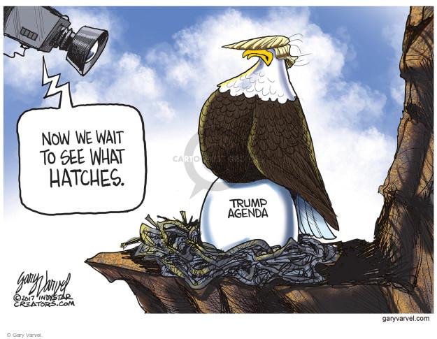 Gary Varvel  Gary Varvel's Editorial Cartoons 2017-01-20 Presidency