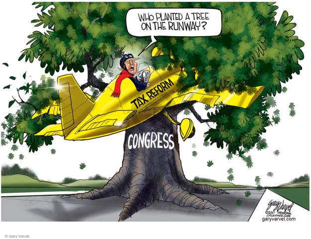 Who planted a tree on the runway? Tax reform. Congress.