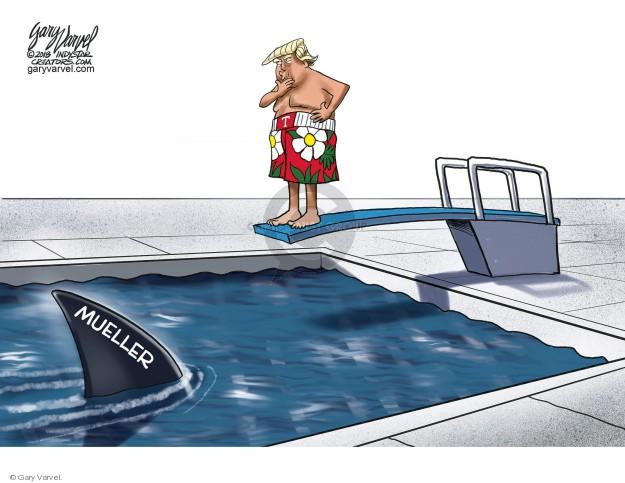 Gary Varvel  Gary Varvel's Editorial Cartoons 2018-08-12 counsel