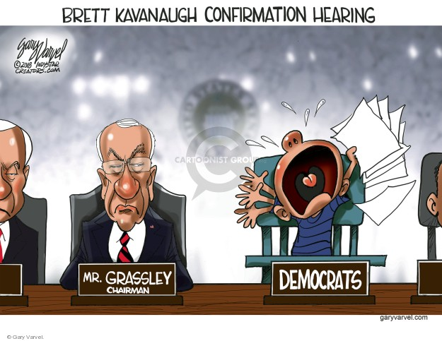 Brett Kavanaugh Confirmation Hearing. Mr. Grassley. Chairman. Democrats.