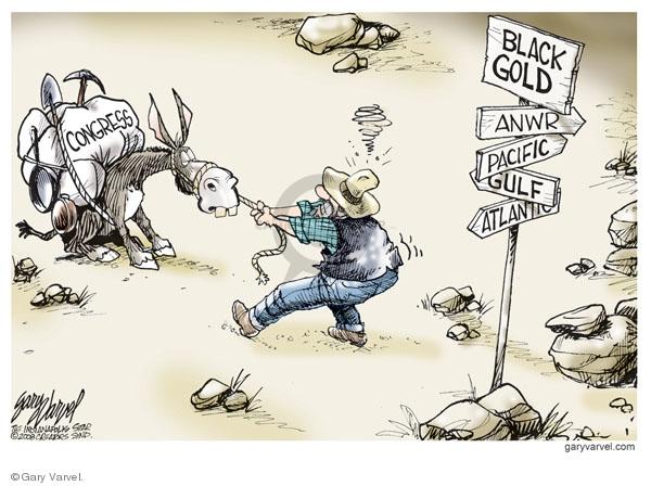 Gary Varvel  Gary Varvel's Editorial Cartoons 2008-06-13 refuge