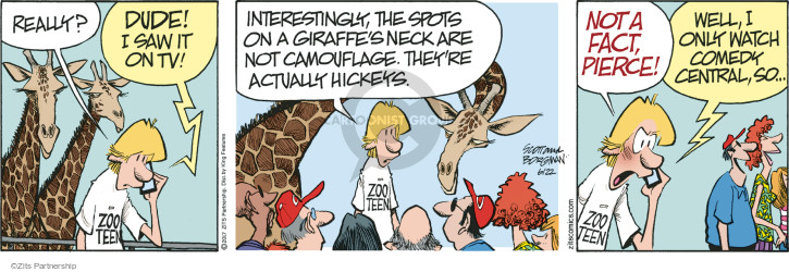 Really? Dude! I saw it on tv! Interestingly, the spots on the giraffes neck are not camouflage. Theyre actually hickeys. Not a fact, Pierce! Well, I only watch Comedy Central, so … Zoo Teen.